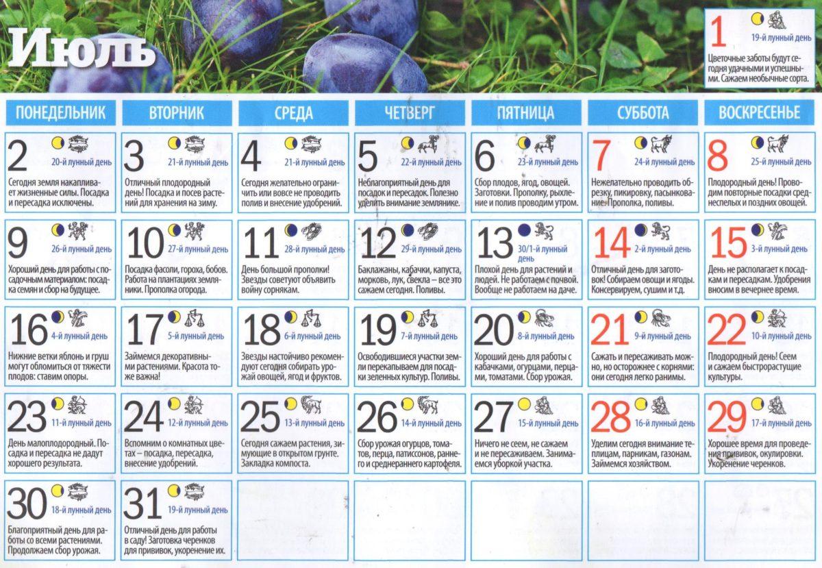 Лунный календарь для садоводов и огородников на июль 2018 года